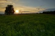 Dwa drzewa i wrześniowy zachód słońca.
